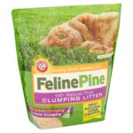Feline Pine Cat Litter Is Good For Your Health, The Environment, And Your Wallet