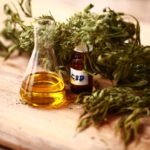 5 Best Cbd Oils For Anxiety