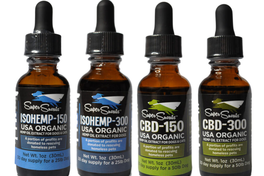 Why Should People Consider CBD Oil for Dogs?